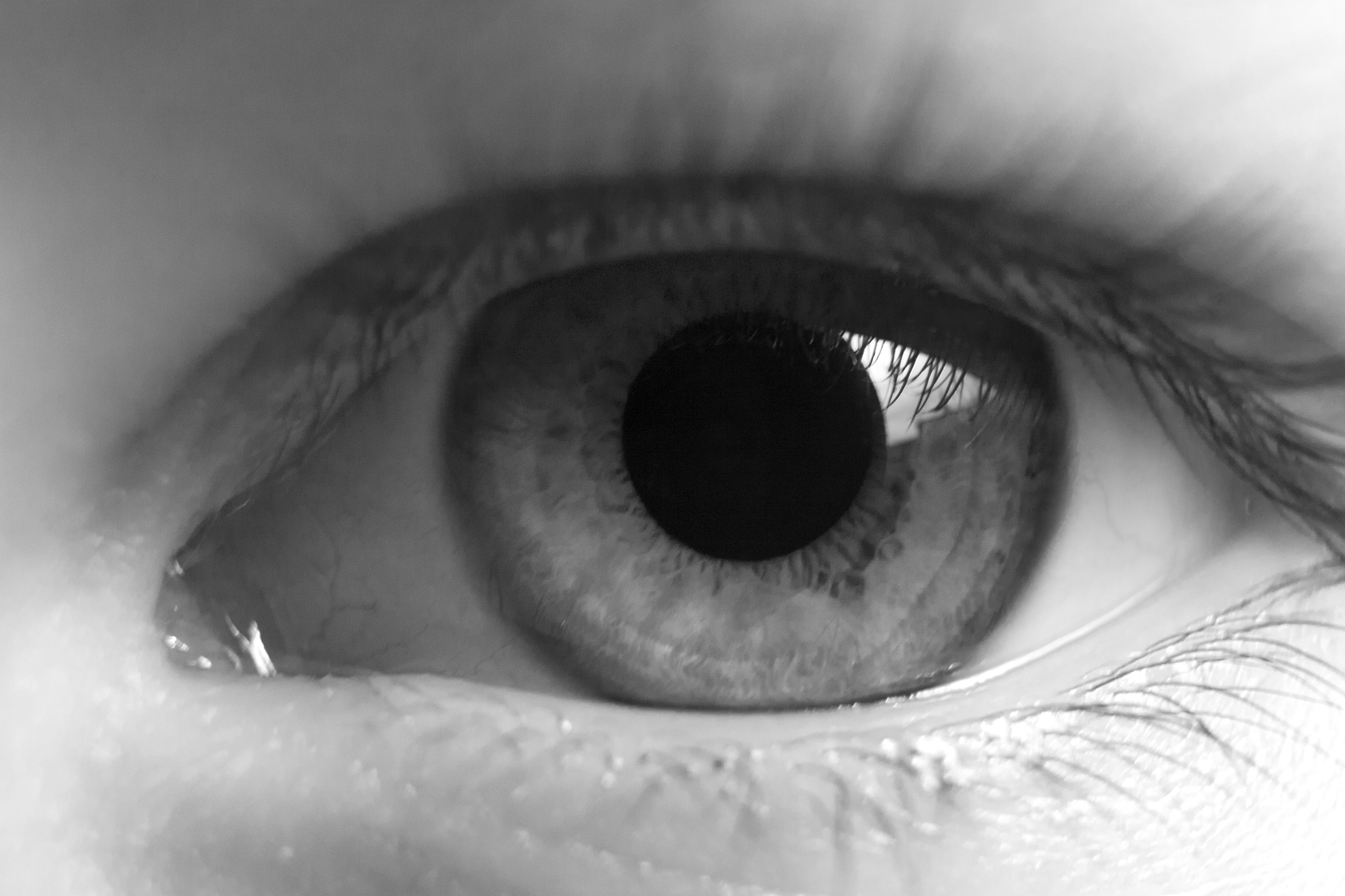 Human eye close up in black and white extended pupil